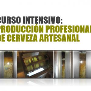 Curso producción cerveza artesanal